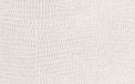 Pelle Leguan bianco