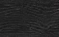 Pelle Leguan nero